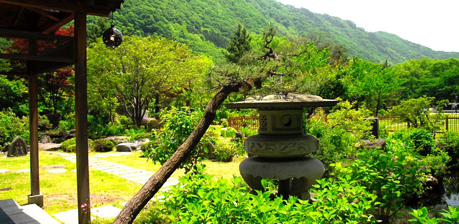 THE ART AND DESIGN OF A JAPANESE GARDEN